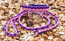 Forever Shades Collar - Pink & Purple